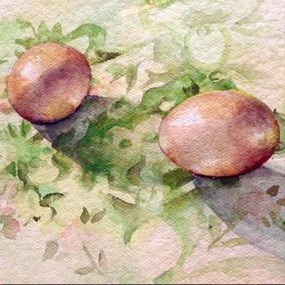 Juditta Musette - Eggs
