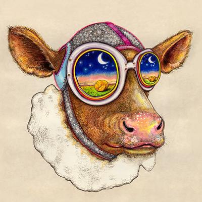 Juditta Musette - Cow